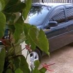 Cuide bem do seu carro – A lavagem