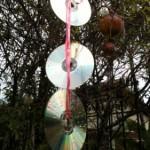 Mito ou verdade: Pendurar CDs espanta pombos?